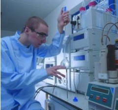 Physical and Chemical Characterisation