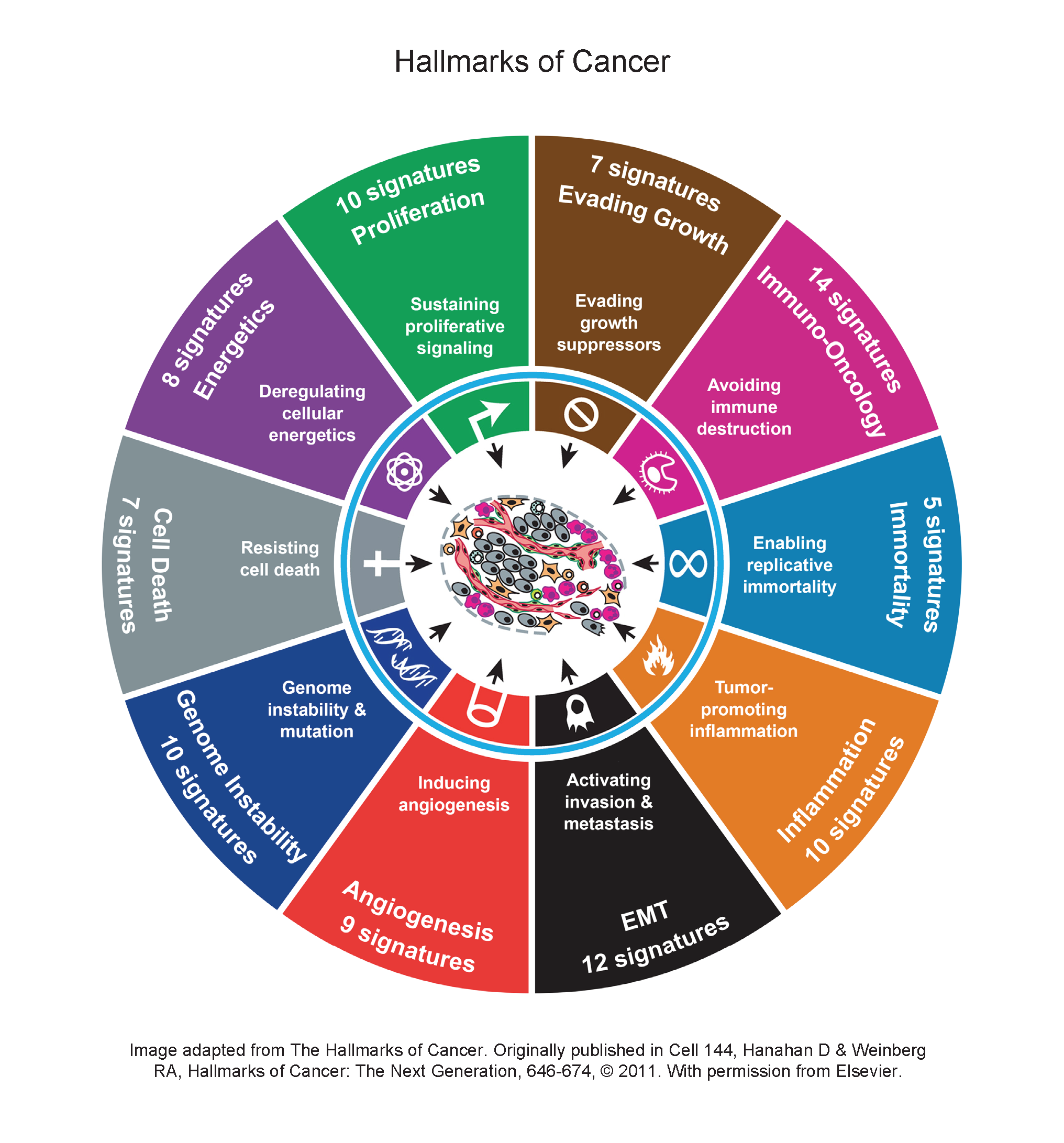 Hallmarks of Cancer