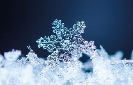 Almac Group Launches Next Generation Temperature Management Software