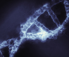 DNA Damage Response Deficiency Assay predicts response to treatment in ovarian cancer