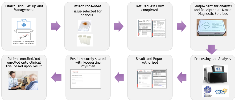 Clinical Testing Process example